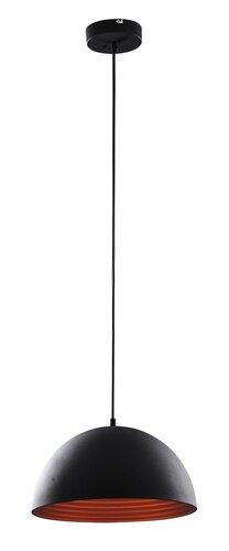 3956.jpg
